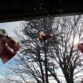 Valentines, Valentines crafts, wax paper crafts